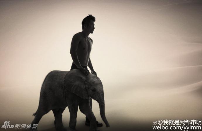 黑白画可爱的小象