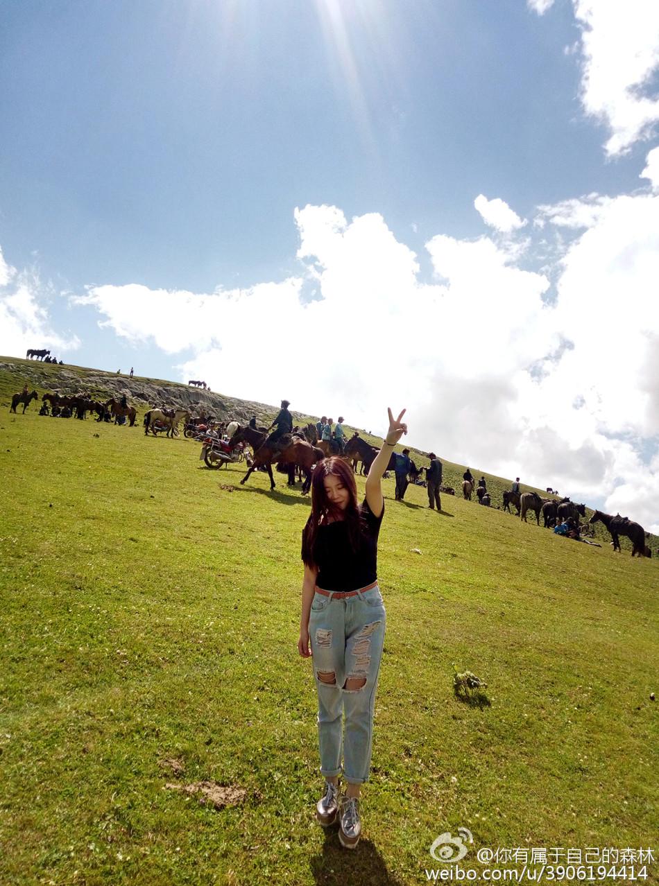 14 美女网友骑马秀自拍,她在微博写道:一望无际~到处可见的牛羊群