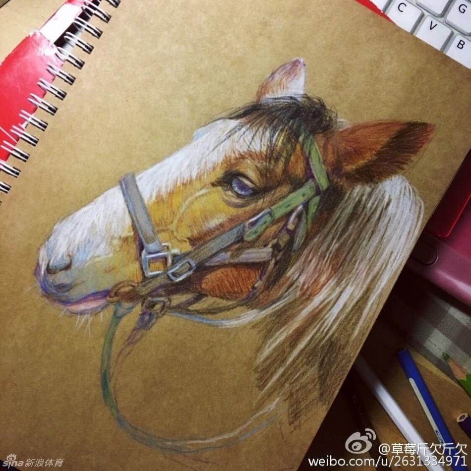 插画师画笔下灵动可爱的马儿_高清图集_新浪网
