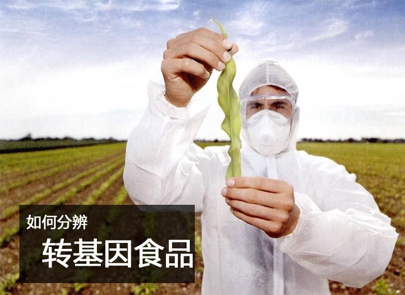 nba回放预测-华中华东-安徽省-巢湖