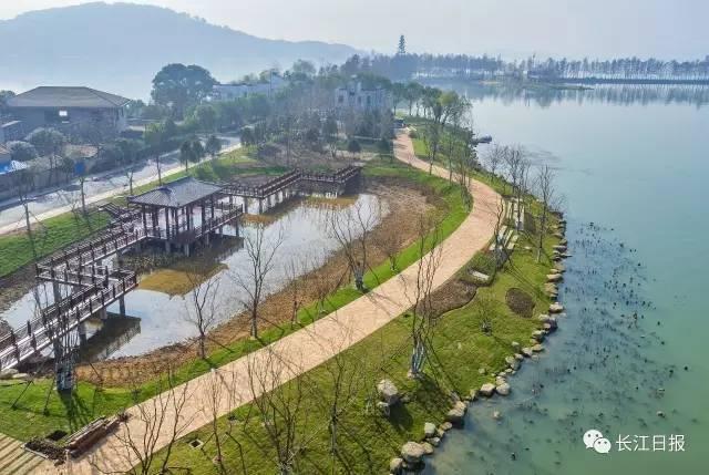 揭秘 世界第一绿道 东湖绿道图片