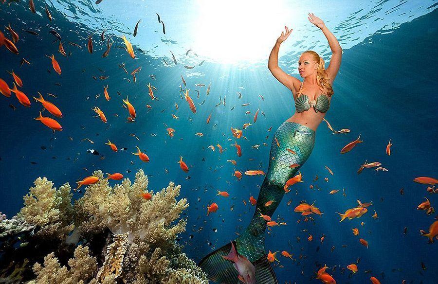 现实版 美人鱼 开启奇幻之旅