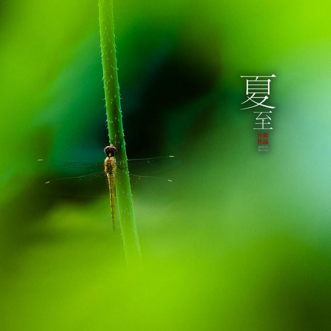 24节气美图大赏,沉静在中国古典风景中的画面!-24节气美图大赏
