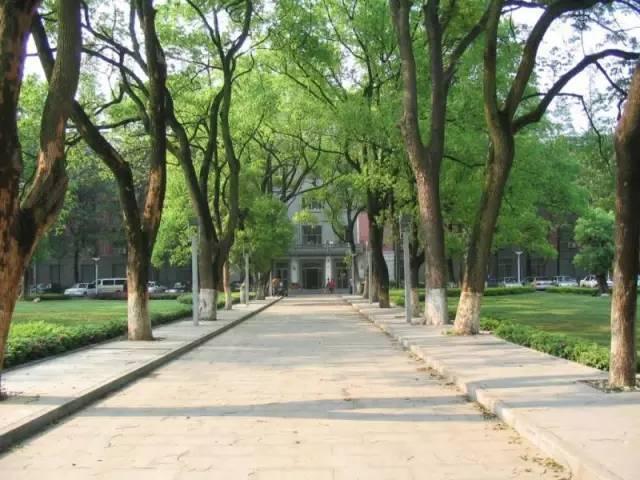 中南大学风景优美,最近,还与QS、THE、ARWU并列为全球四大权图片