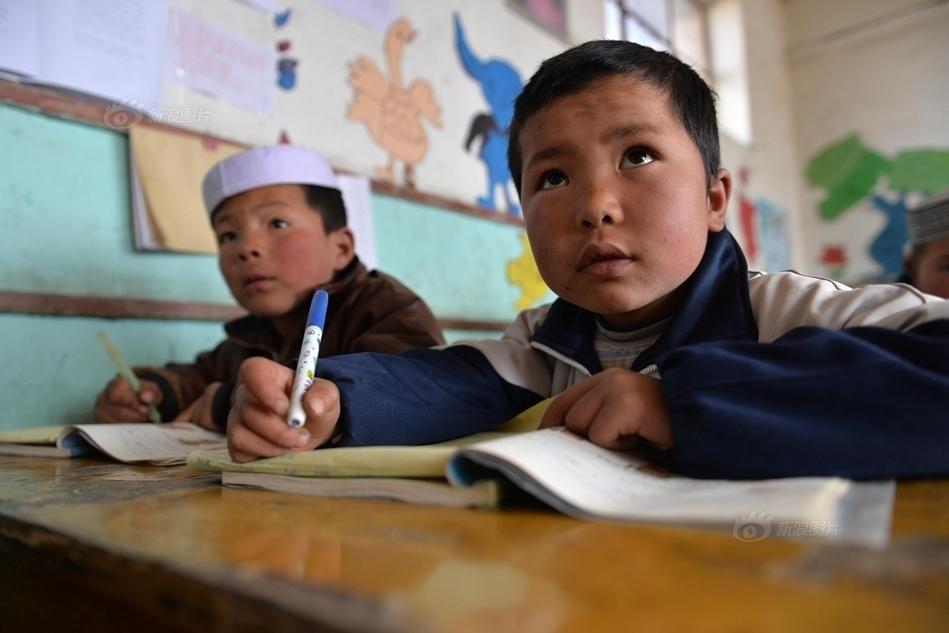 畜景牲景寒武纪年吧-甘肃东乡一些小学一年级有50个学生到五年级就只剩下5个.九年制...