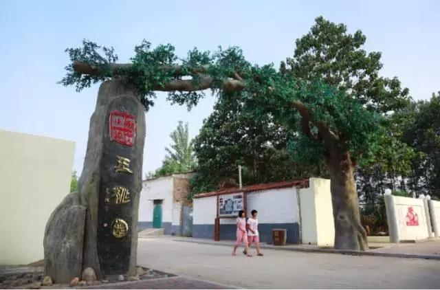 东莞33小镇风景树