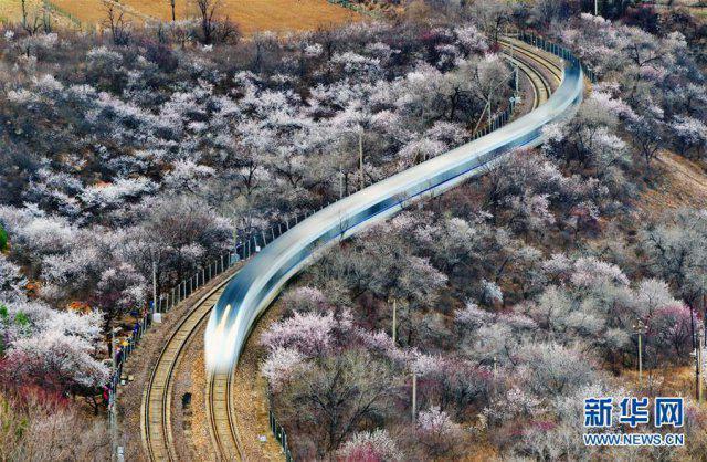 开往春天里的列车