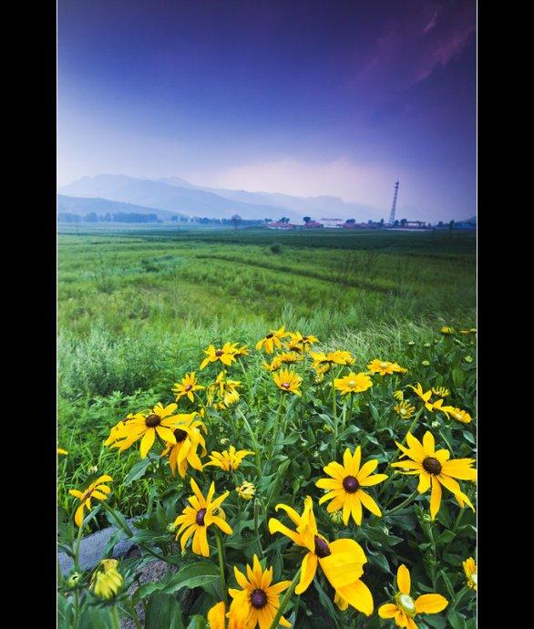 里,青山妩媚、草木葳蕤,鲜花遍野,百鸟翻飞,是一个集河流、草