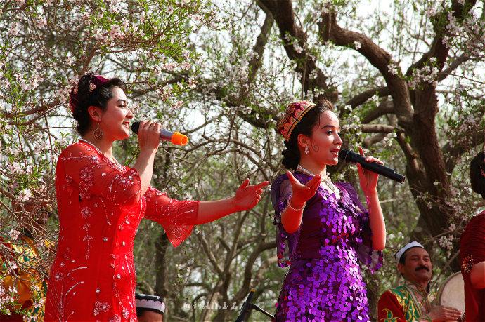 维吾尔族歌曲悠扬动听-新疆莎车县巴旦姆花节上的艳色美女