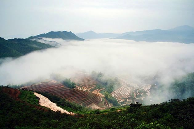 江西赣州崇义gdp_打造中国家具产业 新地标