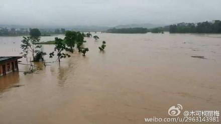 洪水来袭,如何做好防范