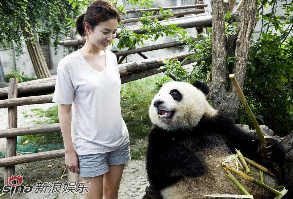 宋慧乔看到熊猫吃竹子的模样露出满足的神情
