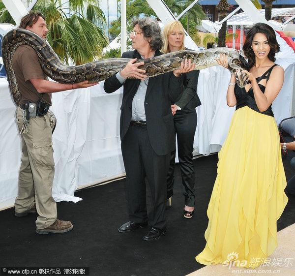 《欲蛇》见面会 印度女星玛丽卡蟒蛇绕脖