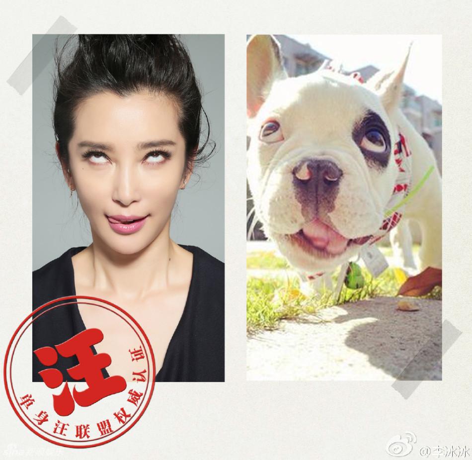 出一组模仿狗狗表情的照片,照片中她或翻白眼、或瞪大眼、或闭
