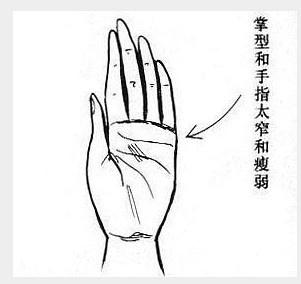 lck职业联赛-华南-广西自治-贺州