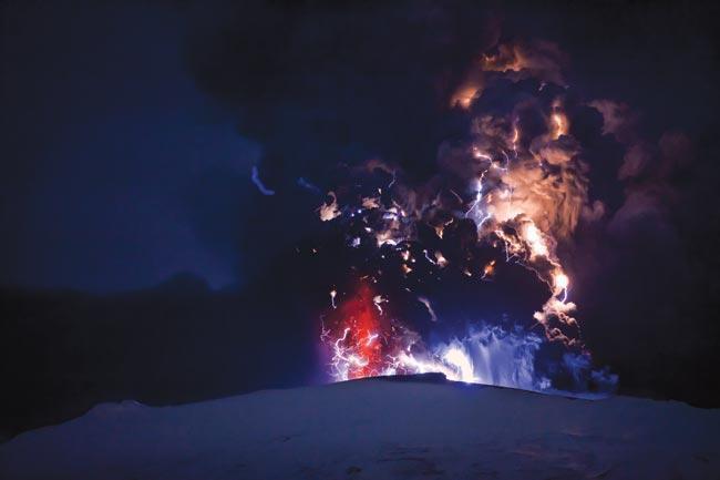 英国自然杂志公布2010年度图片图片