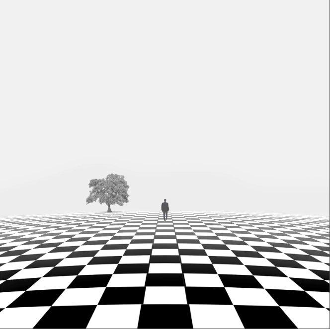 如梦如幻的黑白世界 极简主义摄影作品