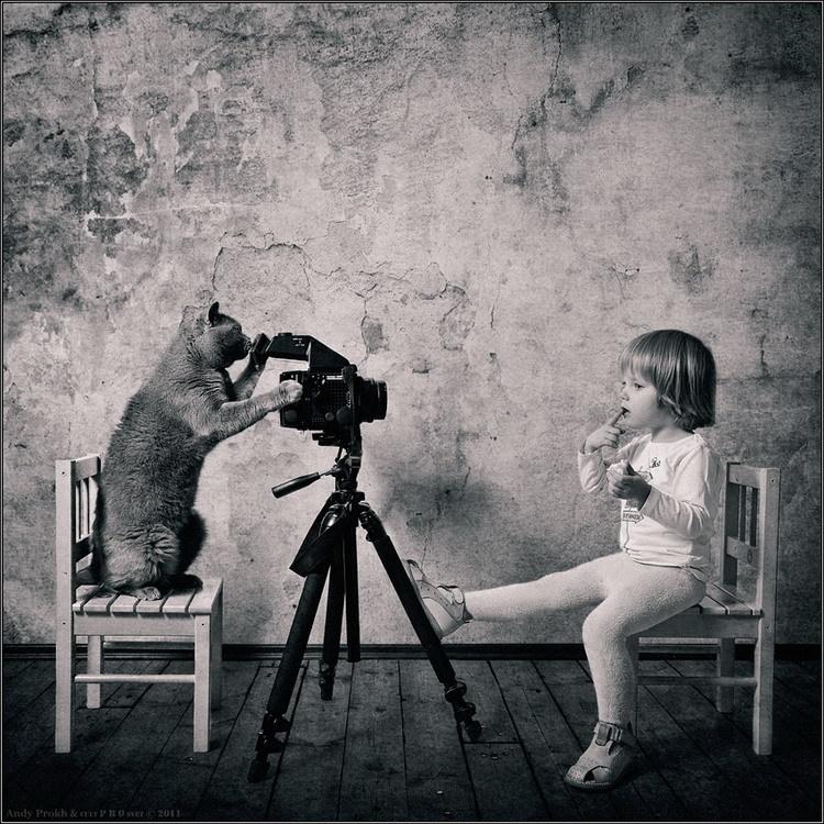 创意摄影:小女孩与猫咪的快乐生活