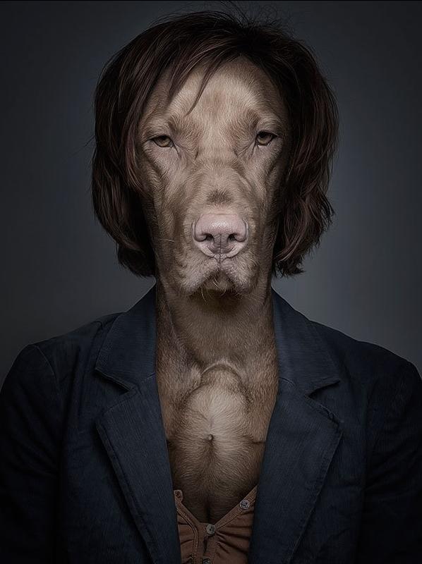 每一只狗都被赋予了它自己的个性.