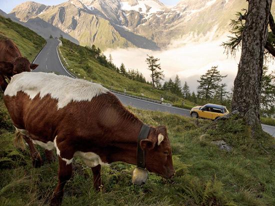 阿尔卑斯高山公路