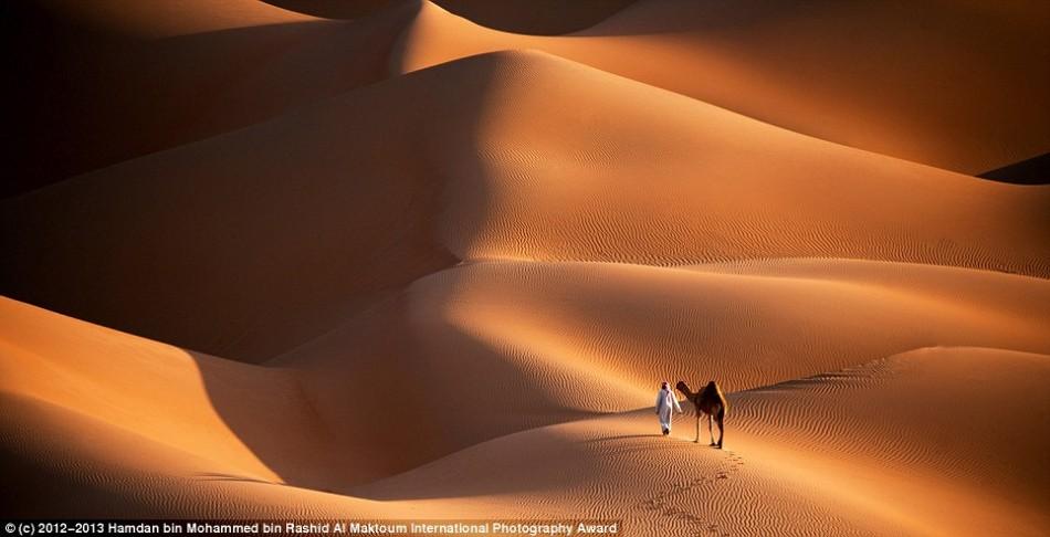 世界最高奖金摄影比赛佳作:沙漠中男子与骆驼
