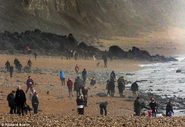 英国海滩侏罗纪悬崖倒塌:露出远古生物化石