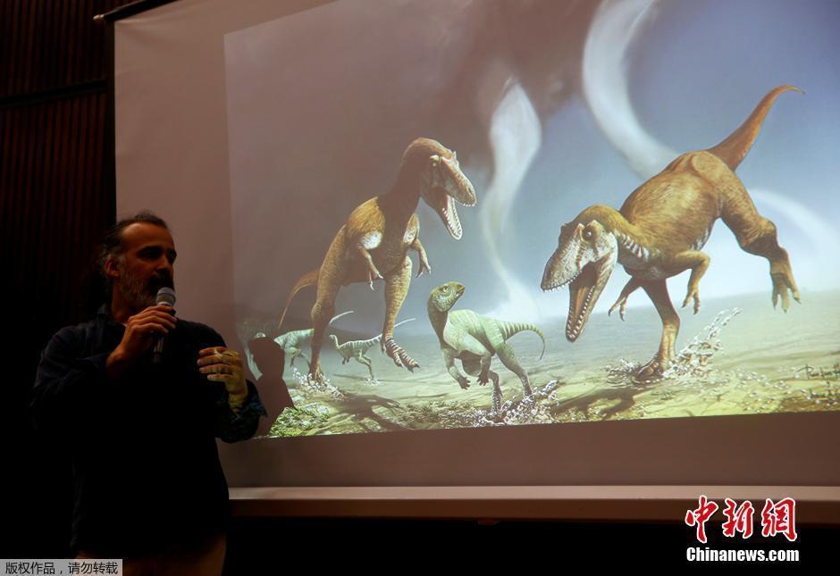 """霸王龙不孤独!阿根廷发现一种""""小短手""""恐龙"""