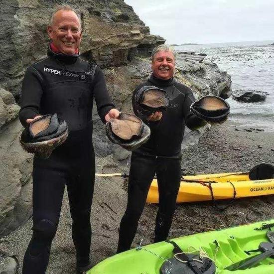 新西兰强震致海床上升2米:震出上万极品鲍鱼
