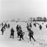 1947-1948年美国视角下的东北战局