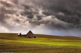 博览壮阔的美国大草原