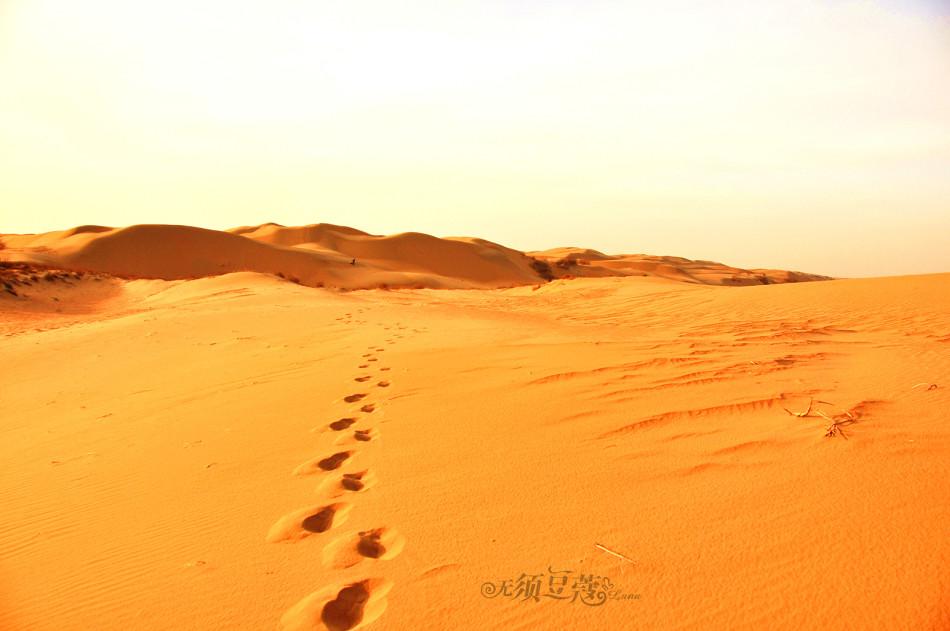 内蒙古恩格贝沙漠 日落风光无限好