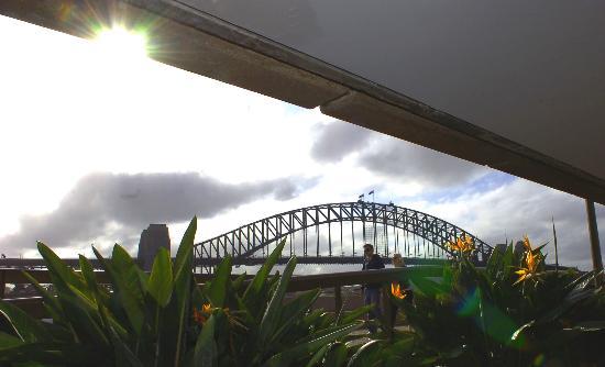 图文:行人从澳大利亚悉尼海湾大桥附近走过