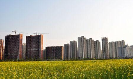 大城市该实行严厉耕地保护制度吗?