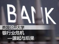 银行业危机源起与后果