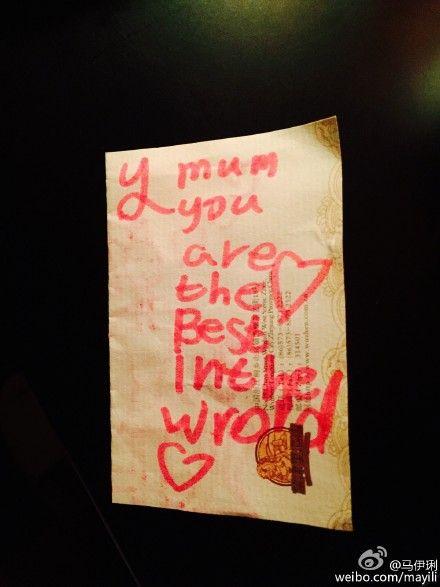 文爱马送给马伊�P的母亲节英语礼物