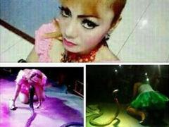 女歌手被毒蛇咬伤致死