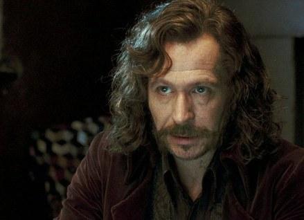 《哈利-波特》人物志--光明与希望(附图)