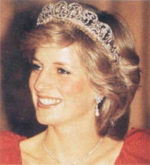 戴安娜逝世10周年忌日威廉和哈里王子追忆王妃