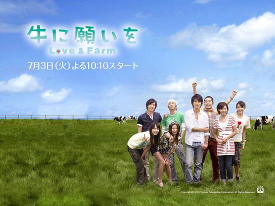 2007夏季日剧强档推荐--《向牛儿许愿~爱在牧场》