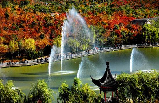 不仅有着1800亩漫山遍野的红叶,还有湖泊、栈桥和野生水鸟