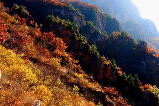 6000公顷的面积,让它成为京城红叶观赏地中,唯一值得呆上两三天的地方