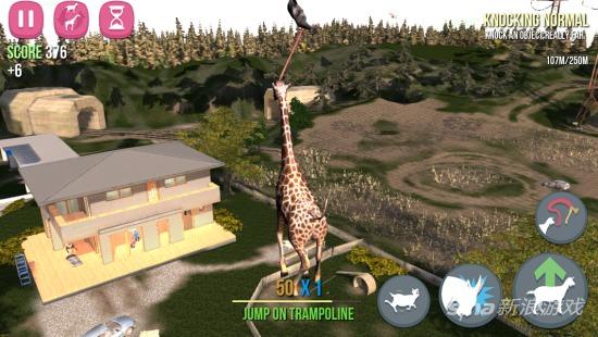 跳跳床的长颈鹿山羊