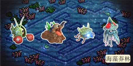 """在水草丛中,珊瑚礁的阴影下, """"海贼王""""有关"""