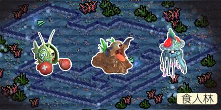 """在水草丛中,珊瑚礁的阴影下, """"海贼王""""有关……"""