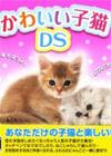 可爱小猫DS