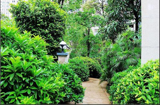 据了解,小区园林采用的是法式山地景观风格,项目入口处有一个自然浅图片