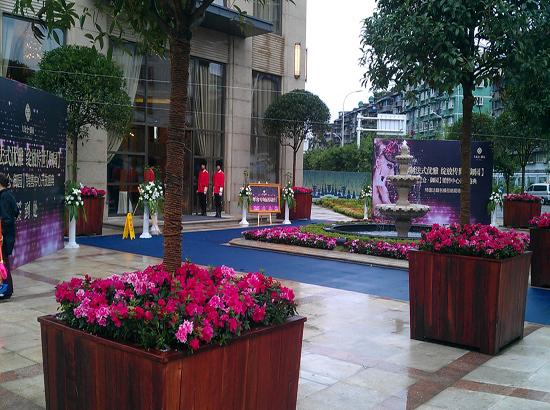 中轴对称的皇室布局,欧式水景喷泉,法式雕塑小品,建筑,园林侍列两侧