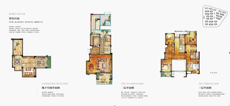 合墅B户型――罗宾庄园