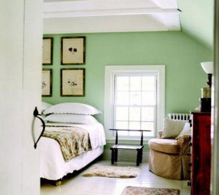 鲜艳手绘绿植背景图