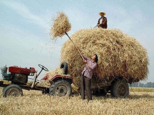 新乡市获批全国农村改革实验区5月22日授牌